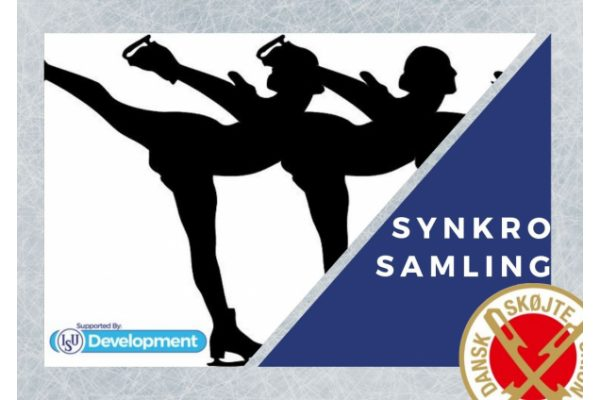 Synkro Camp vol 2