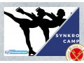 Synkro camp vol. 3